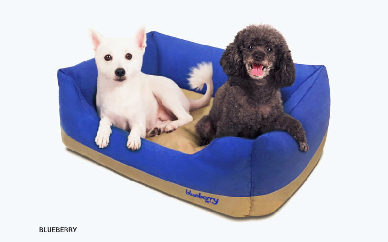 Blueberry Pet Heavy-Duty Pet Bed - product image